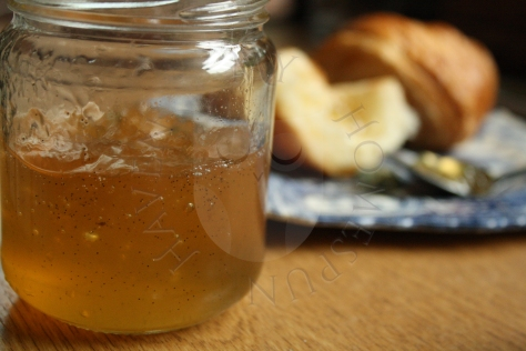 elderflowervanillajelly